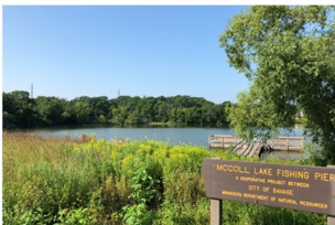 City will operate aeration system on McColl Pond